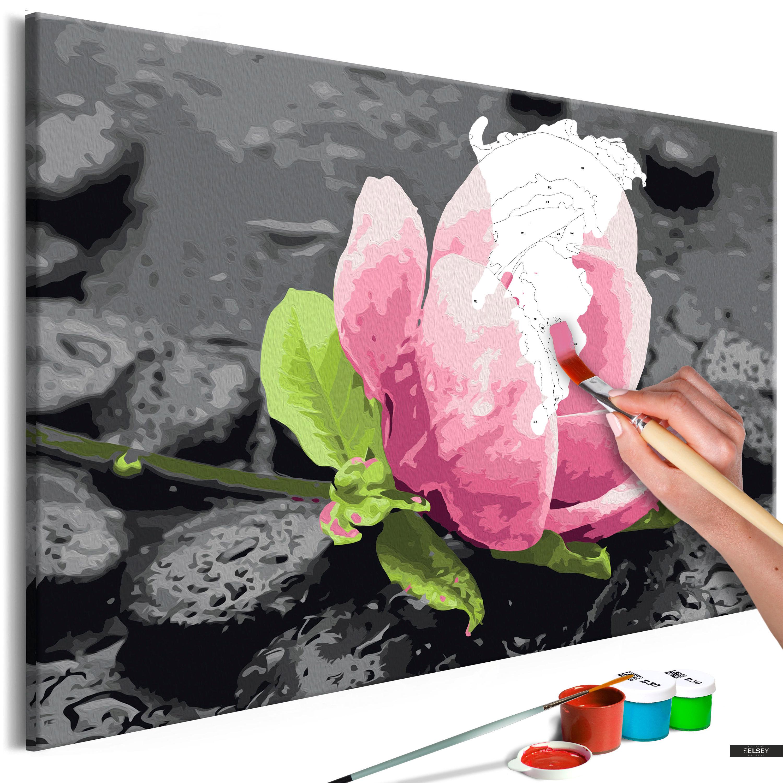 Malen Nach Zahlen Rosa Blume Und Steine 60x40 Cm
