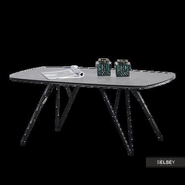 Couchtisch ELYDA in Betonoptik/Schwarz 110x60 cm