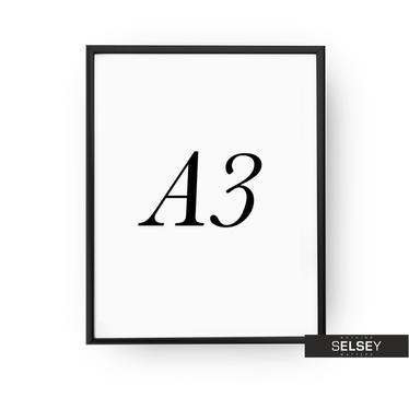 Bilderrahmen A3 schwarz