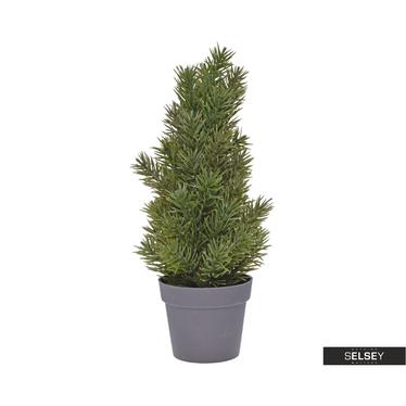 Weihnachtsbaum Im Topf Geschmückt.Weihnachtsbäume Online Kaufen Selsey