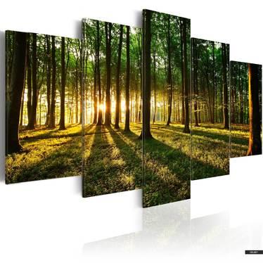 Wandbild ABENTEUER IM WALD 100x50 cm