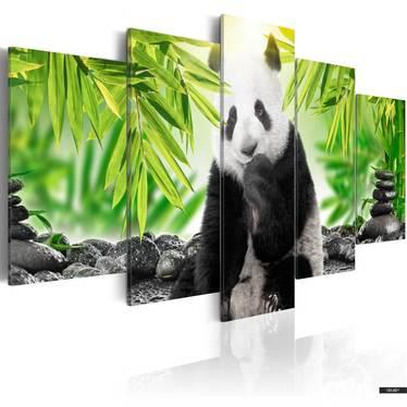Wandbild FATMIR 100x50 cm mit einem Pandabären