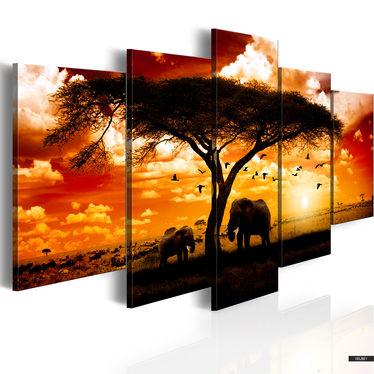 Wandbild AFRIKA: ABENDHIMMEL 100x50 cm
