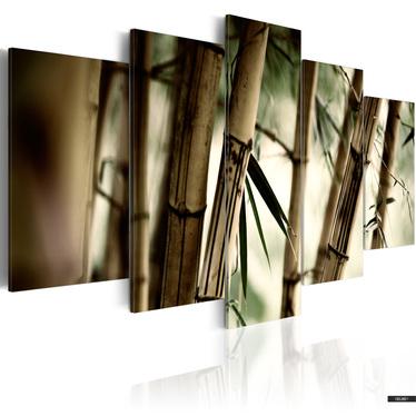 Wandbild BAMBUSWALD 100x50 cm