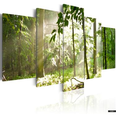 Bild SONNENSTRAHLEN IM WALD 100x50 cm