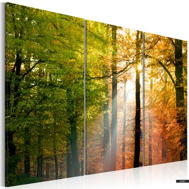 Wandbild FREUNDLICHER HERBSTWALD 120x80 cm
