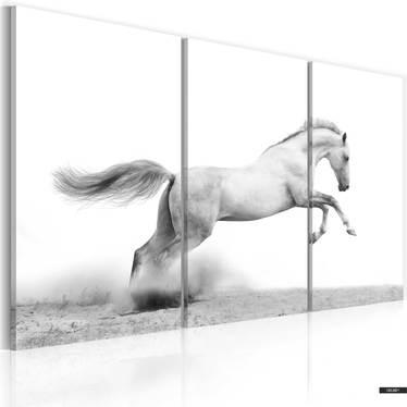 Wandbild GALOPPIERENDES PFERD 120x80 cm