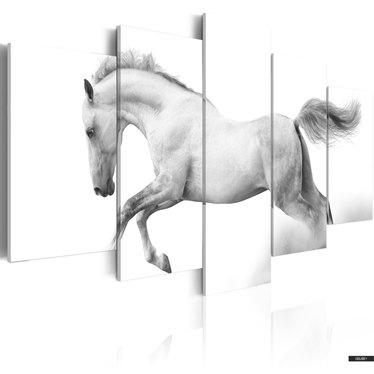Wandbild PFERD - LEIDENSCHAFT UND FREIHEIT 100x50 cm