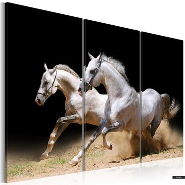 Wandbild GALOPP - FREIHEIT UND ENERGIE 120x80 cm