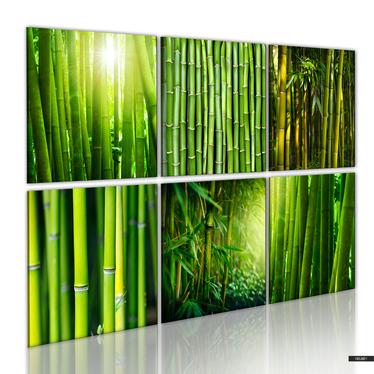Wandbild BAMBUS 6-teilig 120x80 cm