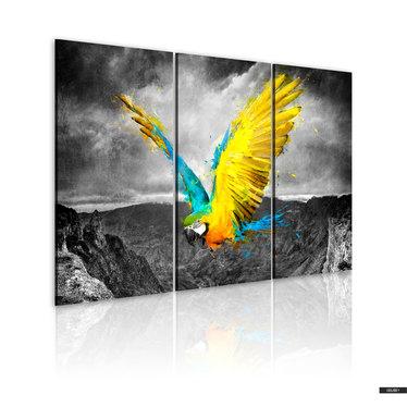 Wandbild PARADIESVOGEL 120x80 cm
