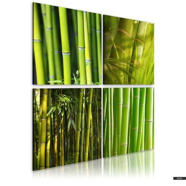 Wandbild BAMBUSSE 40x40 cm