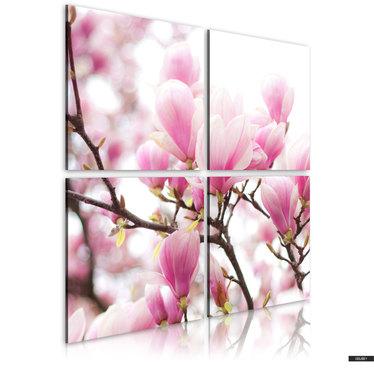 Wandbild BLÜHENDER MAGNOLIENBAUM 40x40 cm