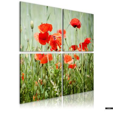 Wandbild FRÜHLINGSZEIT 40x40 cm