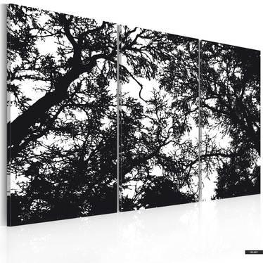 Bild DUNKLER WALD 60x40 cm