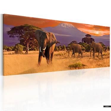 Wandbild AFRIKA: ELEFANTEN 120x40 cm