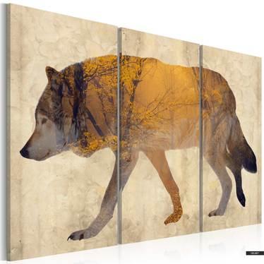 Obraz - Wędrujący wilk 60x40 cm