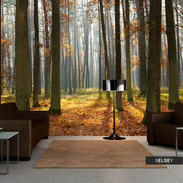 Fototapete AUTUMN TREES 200x154 cm