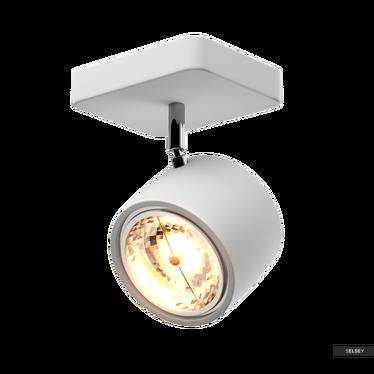Wandlampe DARWIN weiß Wand- und Deckenstrahler