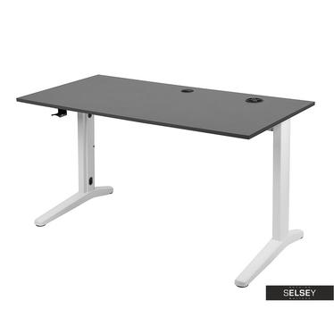 Gaming-Tisch LOKOTI grau