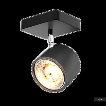 Wandlampe DARWIN schwarz Wand- und Deckenstrahler
